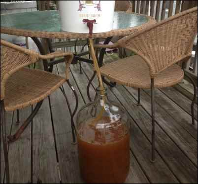 mead carboy