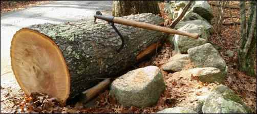 cant hook, woodcutting, cut firewood, Homestead Woodcutter, homesteading
