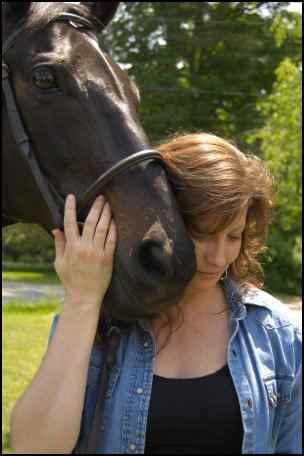 adopting rescue horses