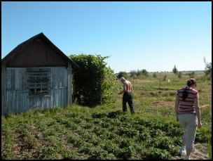 Homestead.org in the Former Soviet Union, homesteading in Russia