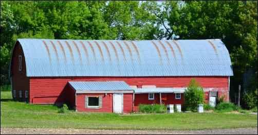 health benefits of Raw Milk, homesteading