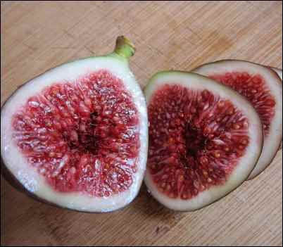 facts about figs oldest cultivated plant