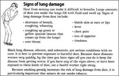 strategies for sustainability, signs of lung damage